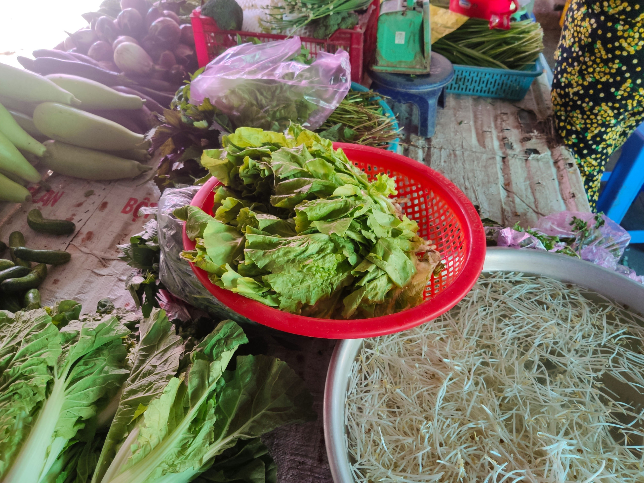 Vietnam-vegetable